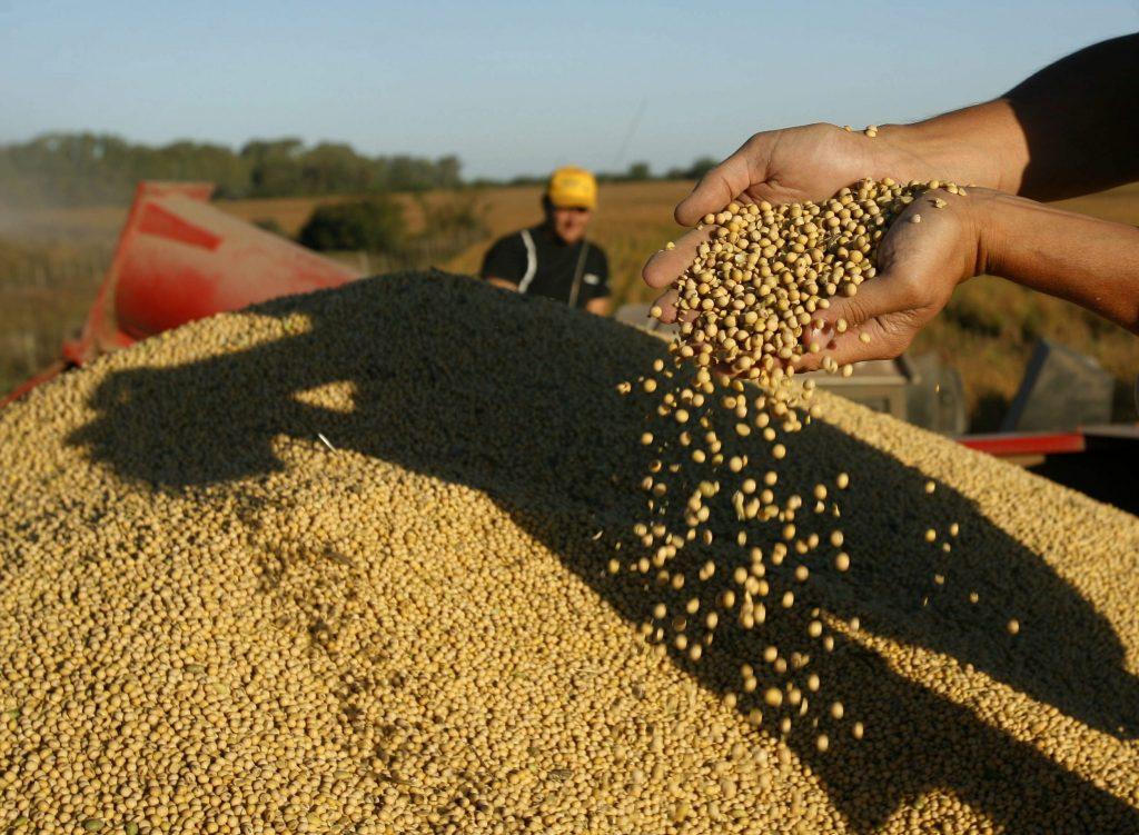 imagen de cosecha en Argentina